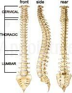 Image 4 | Advantage Chiropractic