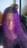 Purplecurls