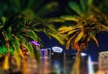 Orlando Fl. Skyline