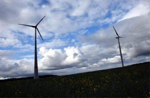 wind power career