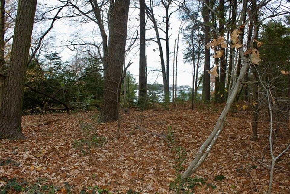 Home for sale: 00 Pine Tree Road, Reedville, VA