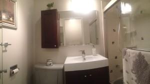 Home for sale: 555 W. Cornelia Chicago IL
