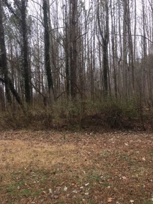Home for sale: 00 Great View Lane Heathsville VA