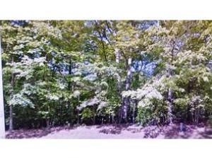 Home for sale: 109 LL Greenwood Dr Williamsburg VA