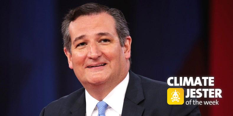 Cruz jester