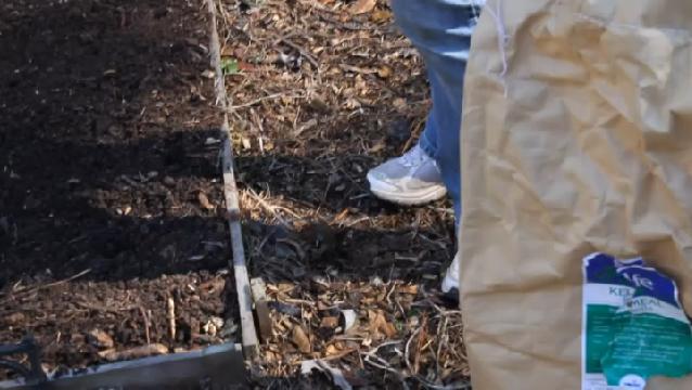 Video: How to Use Potash & Potassium in My Garden | eHow
