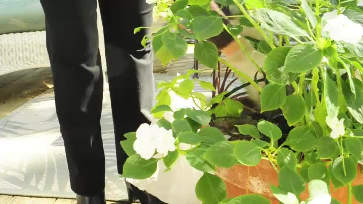 Video Homemade Squirrel Repellent For The Garden Ehow