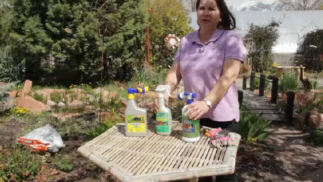 how to get rid of fungus in garden