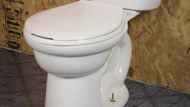 how to fix the toilet when it won t flush