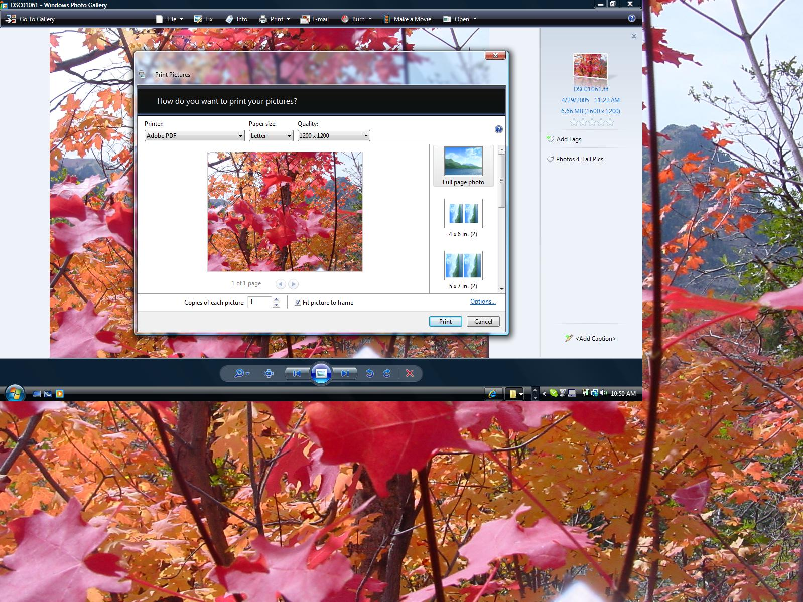 how to convert pdf to tiff file