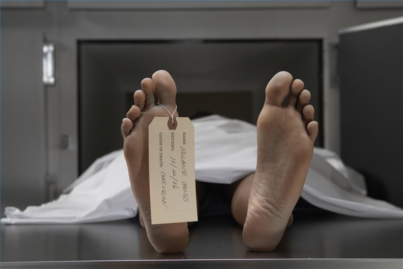 How to Work in a Morgue   Career Trend