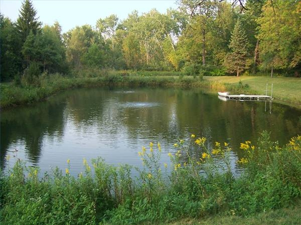 How To Make A Pond For Fishing Gone Outdoors Your