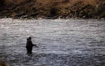 Fishing in cedar river washington gone outdoors your for El paso fishing