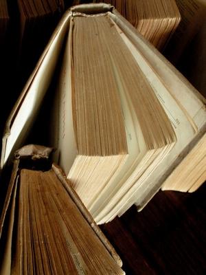 Book report titles