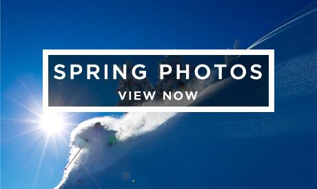 View Spring Photos
