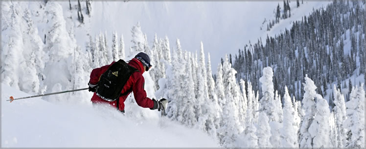 Pay as you Play with CMH Heli-Skiing