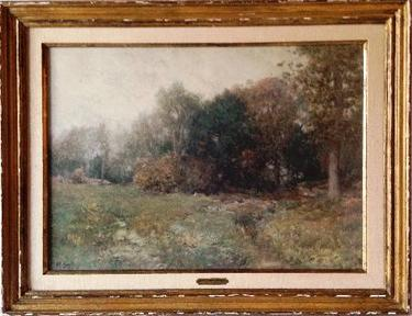 Display_wyant_wc_field_and_forest