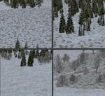 Gurra_light_snow_landscape