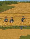 Mod_terrain_grain_v2_vossie