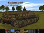 Arist_weathered_su_122
