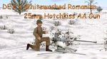 Dey_ww_romanian_25mm_aa_gun
