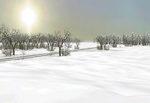 Sky_clear_winter_snow-ls