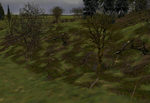 Tree-bases_scattered_winter_no_snow-ls