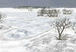 Water_winter_snow_thick_ice-ls