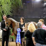 2012 Arabian Breeder Finals
