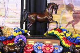 2019 Arabian National Breeder Finals