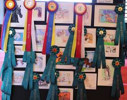 2020 Scottsdale Show Art Contest