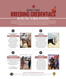 Boost Your Breeding Credentials