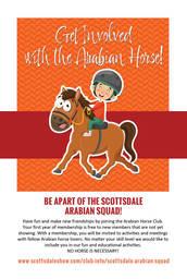 Scottsdale Arabian Squad
