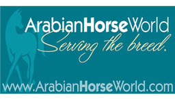 Arabian Horse World