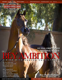 Scottsdale Arabian Horse Show News for Wednesday, February 18, 2015