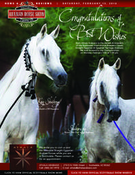 Scottsdale Arabian Horse Show News for Saturday, February 13, 2016