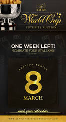 AHBA Futurity Auction...Get your nominations in!