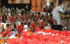 The 2015 Arabian Breeders World Cup
