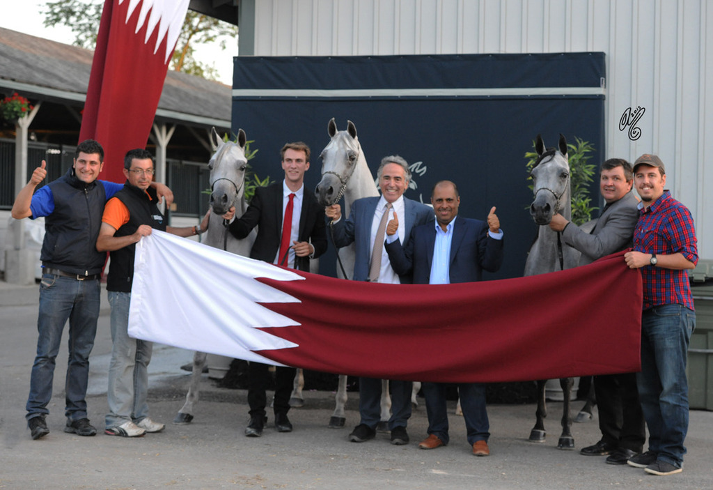 The Winners of the Three-Year Old Filly Class--ALL AL RAYYAN!!