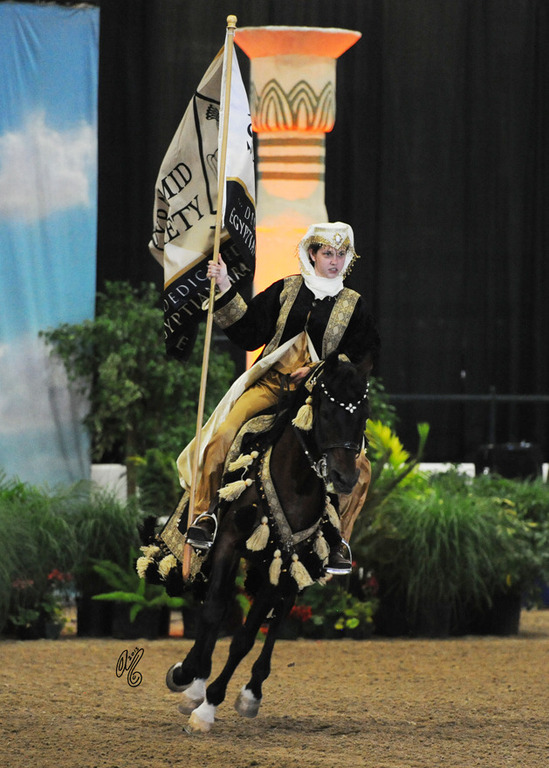 For the Opening Ceremony on Championship night: Rachael Tracey riding Thee Federali carrying The Pyramid Society Flag