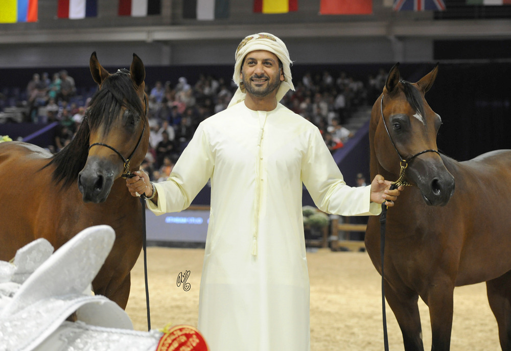 The Dubai Stud won Gold and Silver in both Yearling Championships--with Yearling Colt Champions D Sari and D Qaswarah