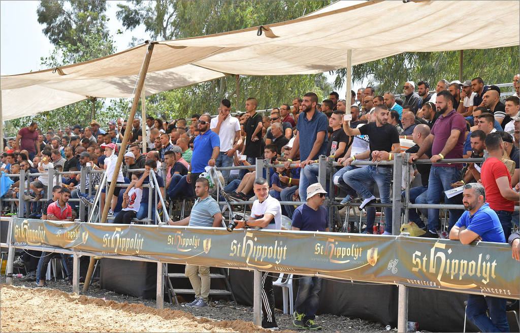 Impressive attendance and support at The Galilee Show