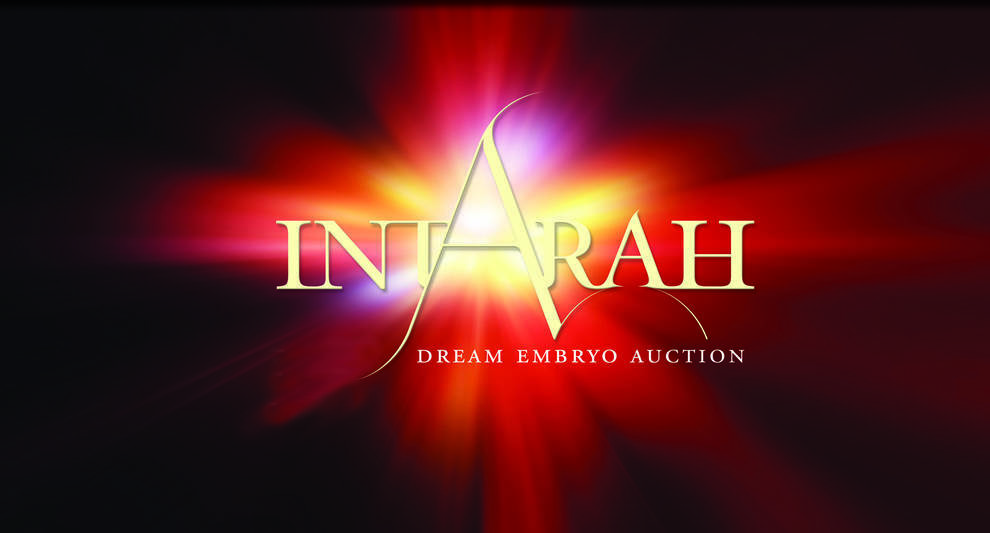 IntArah ... A Dream Come True