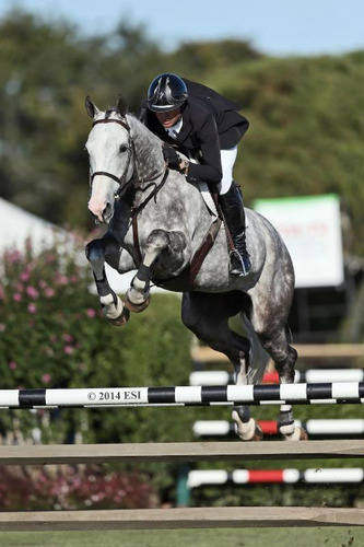 Devin Ryan rode Eddie Blue to win the $20,000 SHF Enterprises YJC 5-Year-old Final presented by North Star  at the Hampton Classic.   (ESI Photo)