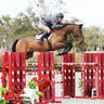 Aaron Vale & Eye Catcher placed 2nd in the $25,000 SmartPak Grand Prix ©ESI Photography