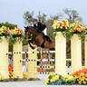 SMRI Concludes 2014 Economic Impact Study of HITS Horse Shows Ocala, Florida