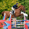 HITS Culpeper Finals Competition Round-Up
