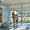 Now Leasing - Private Barns