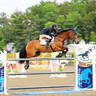 Gallery 2017 - $25,000 SmartPak Grand Prix Winners, Saugerties NY