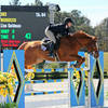 HITS Ocala Winter Circuit kicks off with $2,500 Brook Ledge Welcome and $25,000 Smartpak Grand Prix